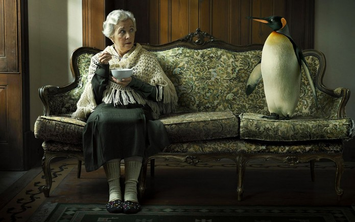 http://www.leukdatjeerbent.nl/wp-content/uploads/fantasie-achtergrond-met-oud-dametje-met-pinguin-op-de-bank-695x434.jpg